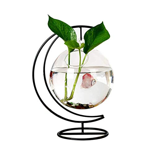 Huachaoxiang Tisch-Aquarium-Hängendes Ball-Terrarium, Mit Verbogenen Stabilem Stand-Glas-Minifisch-Behälter-Blumen-Vase Pflanzen-Flaschen-Garten Fashion Wild,Schwarz