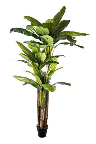 Decoplant BANANERA/PLATANERA X 3 con 36 Hojas Artificial -250 CM