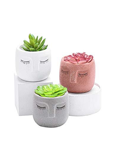 Succulent Plant Pot Set of 3, Concrete Head Planter with Drainage, Face Planter Pot for Flower