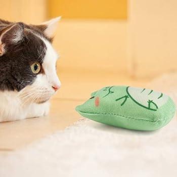 Dorakitten 5 pièces Animal Chat à mâcher Jouet résistant à la Morsure cataire rempli de Chaton Jouet Doux pour Animaux de Compagnie