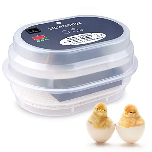Incubadora Automática de Huevos, Incubadora Digital Automática de 12 Huevos, Control Inteligente y Preciso de Temperatura y Humedad, Dispositivo de Incubación para Pollos, Patos, Codornices, Palomas