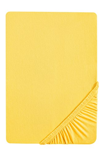 biberna 0077144 Spannbetttuch Feinjersey (Matratzenhöhe max. 22 cm), gekämmte Baumwolle, superweich 1x 90x190 cm > 100x200 cm mais
