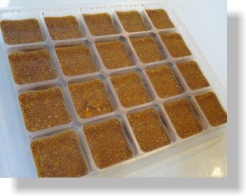 高級ソース デミグラスソース 【冷凍350g】