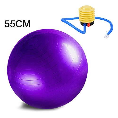 Bcamelys Gymnastikball 65cm 55 cm 45cm 75 cm 85cm Gymnastikball Aufblasbar mit Pumpe Maximalbelastbarkeit bis 150kg, Berstsicher, Fitness-Ball, Sitzball, Yogaball, Pilates-Ball, Balance