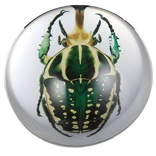 L'Héritier Du Temps Presse Papier Boule de Sulfure Insecte Fossilisé Vert Décoration de Bureau en Verre 3,5x7,5x7,5cm