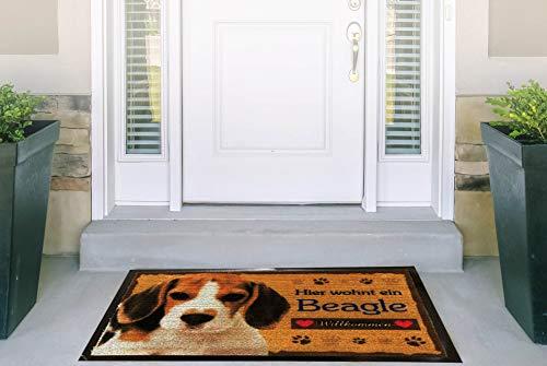 Pfronten Fußmatte Beagle (4), Fußabtreter, Türvorleger, Türmatte wetterfest, Hund