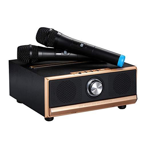 2 sistemas de micrófono inalámbrico, aire Inicio Ktv estéreo en forma de U Micrófono Loud 20W Altavoz Bluetooth dual, compatible con IOS Android PC y otros dispositivos inteligentes ( Color : Black )