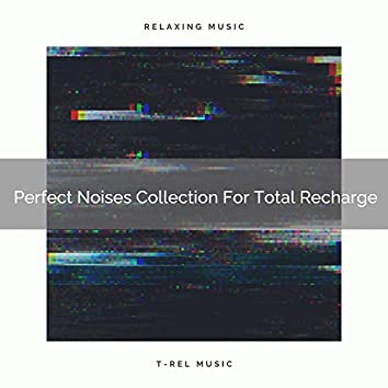 Perfect Noises Collection For Total Recharge