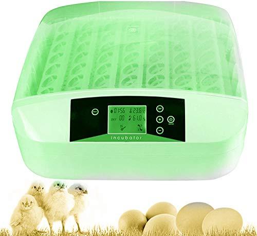 Hesyovy 56 Eier Intelligentes digitales Brutmaschine Brutkasten mit LED Temperaturanzeige und Feuchtigkeitsregulierung,Inkubator Vollautomatische Brutmaschine (Grün)