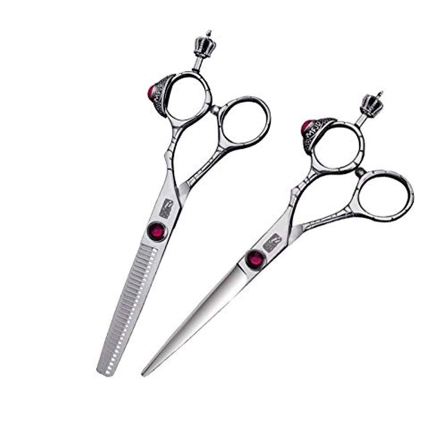 へこみアラームレベルシザー カットシザー ヘアカットはさみ、間伐はさみキット、プロの理髪師用はさみ(2本) ヘアカット シザー (Color : Black)
