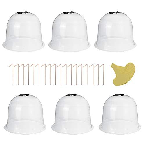 Bireegoo Lot de 6 cloches réutilisables en plastique en forme de dôme de protection pour le sol de jardin froid/chaud et les plantes de culture, transparent