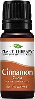 Plant Therapy Cinnamon Cassia Organic Essential Oil 10 mL (1/3 oz) 100% Pure, Undiluted, Therapeutic Grade