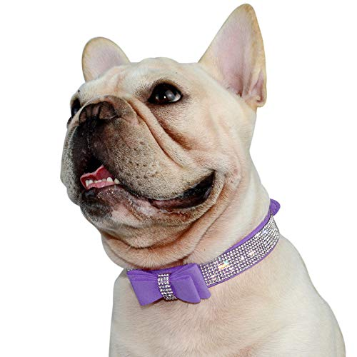 Hifrenchies Cute Crystal Rhinestones Dog Collar for Frenchie, Sparkling Diamonds Soft Suede Leather Butterfly Festival Pattern Dog Pet Collars for Small Medium Dog(XL,Purple)