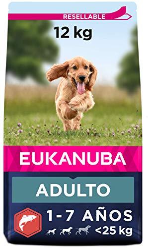 EUKANUBA Alimento seco para Perros Adultos de Razas pequeñas y Medianas, Rico en salmón y Cebada, 12 kg 🔥