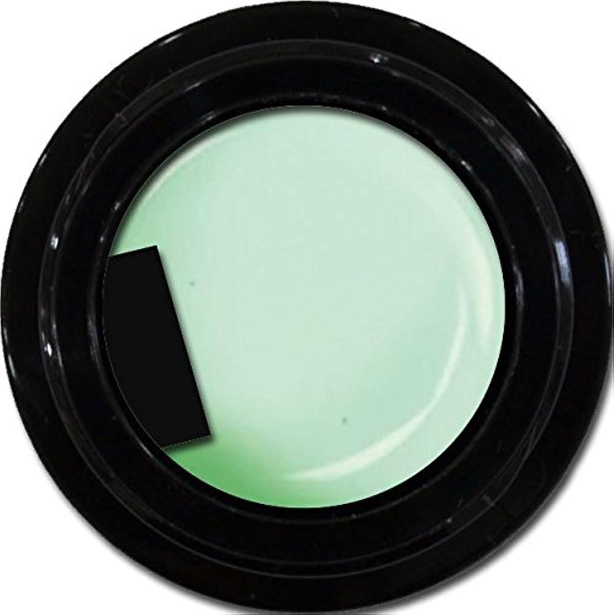 優先権句読点小道カラージェル enchant gel color gel S701 SheerMint 3g/ エンチャントジェル カラージェル シアーミント 3グラム