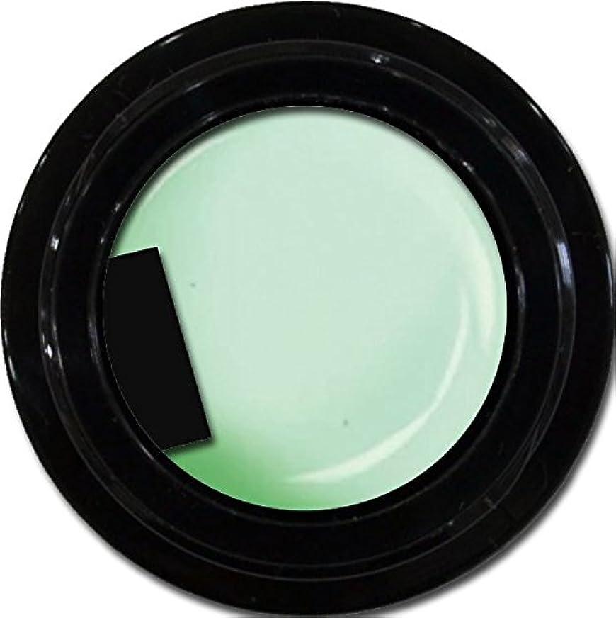 カフェテリアリベラル彼女のカラージェル enchant gel color gel S701 SheerMint 3g/ エンチャントジェル カラージェル シアーミント 3グラム