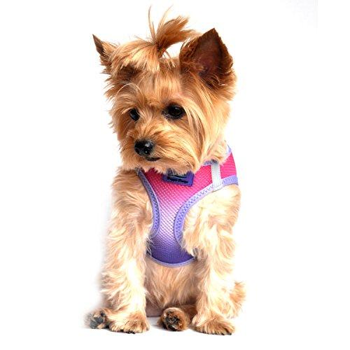 DOGGIE DESIGN American River Dog Harness Ombre Collection - Raspberry Sundae (XXS (9