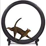AWYLL Dog Treadmill, Pet cat Climbing Frame, Cat Exercise Wheel Pet Running Machine Silent cat Treadmill, Smooth Run Freely for Small/Medium-Sized Dogs Indoor Exercise