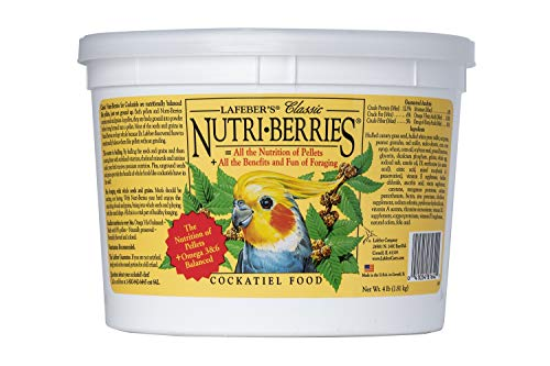 LAFEBER'S Classic Nutri-Berries Pet Bird...