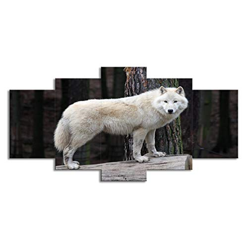 SLJZD canvas prints 5 pieces White Timber Wolf Canvas Prints To Colour Canvas Painting Hd Print Artwork Combine Pictures Canvas Prints Bedroom Unframed 40 Inch
