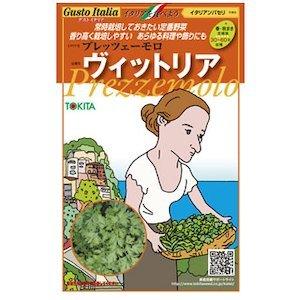 イタリアンパセリ 種【 ヴィットリア 】小袋 約2ml