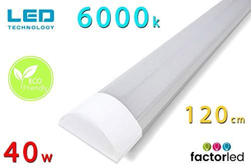 FactorLED Lámpara de techo 40W, Regleta Plana 120 cm, Pantalla Carcasa, Fácil instalación, 4000K – 6000K, [Clase de eficiencia energética A] (Luz Fría (6000K))