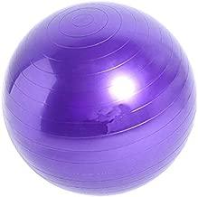 DENGKE 65cm Yoga Ball GYM Exercise Ball Anti Burst Swiss Yoga Aerobic Body Fitness Ball Purple