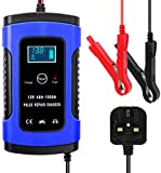 Battery Charger Conditioners
