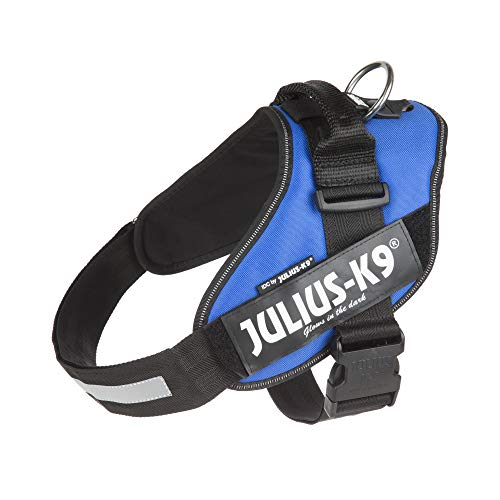 Julius-K9, 16IDC-B-2, IDC Powerharness, dog harness, Size: 2, Blue