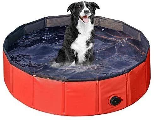 Lanxing Hartplastik Planschbecken Haustier Pool Falten aufblasbare Außen Sommer Badewanne Welpen Katzen Schwimmen tragbare Durable zusammenklappbarer Badeteich for Hunde, Katzen, Pool