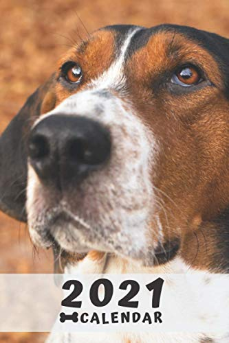 Treeing Walker Coonhound Calendar 2021: Perfect for Notes and Planning, Monthly and Weekly (2021 Planner, Diary)