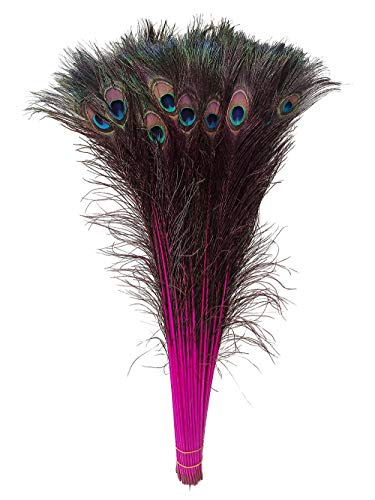 Peacock Feathers, wanjin 25 Pcs Dyeing Feather Long Pole 28-30 inches(Fuchsia)