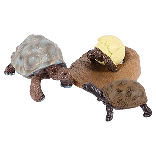 HEMOTON 4pcs Animal Figurine Cycle Life Set Life Cycle of a Turtle Kit Toddlers Learning Teaching Sea Animal Growth Cycle Model Toy Preschool Cognition Playset
