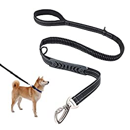 SZCLIMAX Dog Leash, Training Leash with Soft Neoprene Padded Handle, Adjustable Nylon Dogs Lead for Small, Medium and Large Dogs