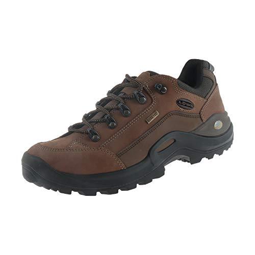 Lowa Damen Schuhe Wanderschuhe Wanderstiefel Trekkingschuhe Renegade II GTX LO Ws Taupe 3209504655 (42 EU)
