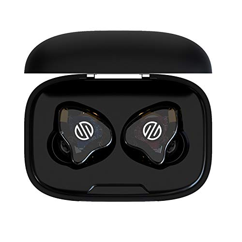 BGVP Q2 Knowels 2BA HiFi Wireless 5.0 Bluetooth Earphone Replaceable Cable in Ear Earbuds Headset Support MMCX Cable Earphone (Black)