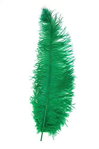 ,Karneval Klamotten' Kostüm Straußenfeder grün Zubehör Karneval Federn