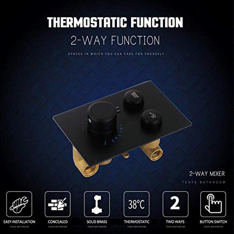 MICHEN Mattschwarz Chrom Thermostat Brausearmatur Duschpaneel 2-Wege-Tasten Steuerschalter Thermostat Brausearmatur,Matteschwarz
