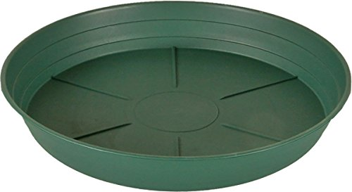 Hydrofarm HGS10P Green Premium Saucer 10-Inch, Pack of 25, 10 inches