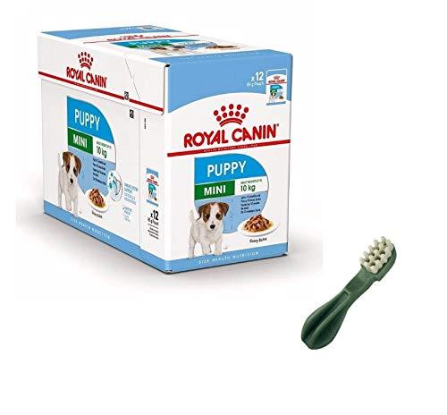 puppy Royal canin Mini Cibo Umido per Cuccioli 12 bustine da 85 gr Piu Snack vegetale spazzolino per la Pulizia dei Denti Cani Cuccioli