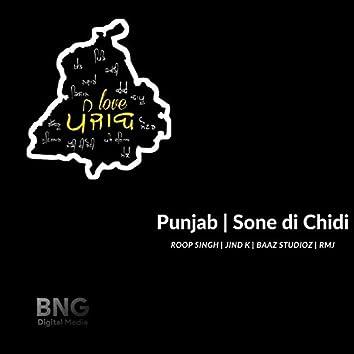 Punjab Sone Di Chidi