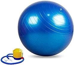 Blue Anti Burst Gym Ball 65cm Fitness Yoga Exercise Home Pregnancy Birthing Ball