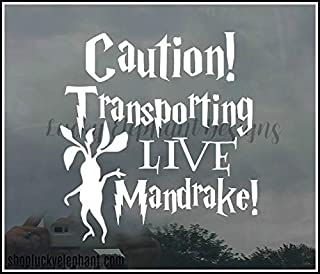 Transporting Live Mandrake Car Decal - Mandrake on Board Decal - Live Mandrake Baby on Board Decal