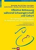 Effektive Betreuung während Schwangerschaft und Geburt: Ein evidenzbasiertes Handbuch für Hebammen und GeburtshelferInnen - Mechthild Gross