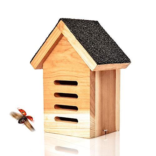 Skojig© Marienkäferhaus aus Naturholz - Überwinterungshilfe & Unterschlupf für Marienkäfer - wetterbeständiges, unbehandeltes Massiv-Holz : Insektenhotel Insektenhaus