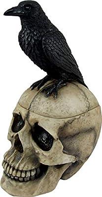 DWK - Memories Nevermore - Black Raven Perched on Ancient Human Skull Trinket Box Poe Crow Keepsake Jewelry Stash Holder Figurine Gothic Bookshelf Tabletop Home Decor Accent, 9.5-inch