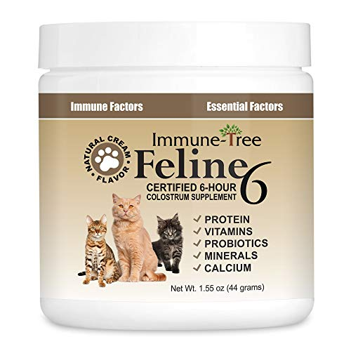 Immune-Tree Colostrum Probiotic Powder for Cats | Supplement for Cat Allergy, Immune Support, Skin and Coat & Itching Relief | Colostrum Powder for Cats Immunity System | Made in USA | 1.55oz