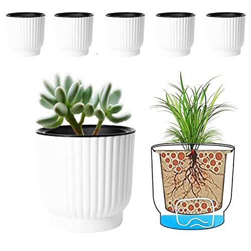 MOHENA 10CM Vasi per irrigazione automatica con corda Contton per piante da interno, vasi da fiori in plastica per tutte le piante da appartamento, fiori, violette africane - Bianco confezione da 6