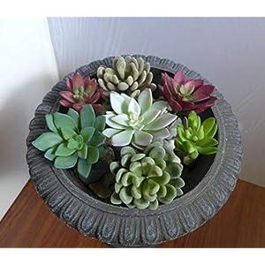 Artificial Succulent Mix Snowball and Lotus Flower Grass Get 7 – Artificial Succulents #PL201YN