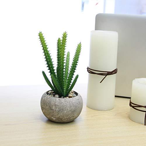 ZHONG EEN Kunstplanten met pot, kunstmatige sappige planten, voor appartement kantoor badkamer vensterbank hotel restaurant bruiloft decoratie